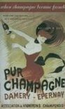 Kolleen M. Guy - When Champagne Became French